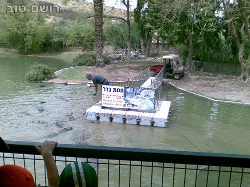 תנינים בחמת גדר-6
