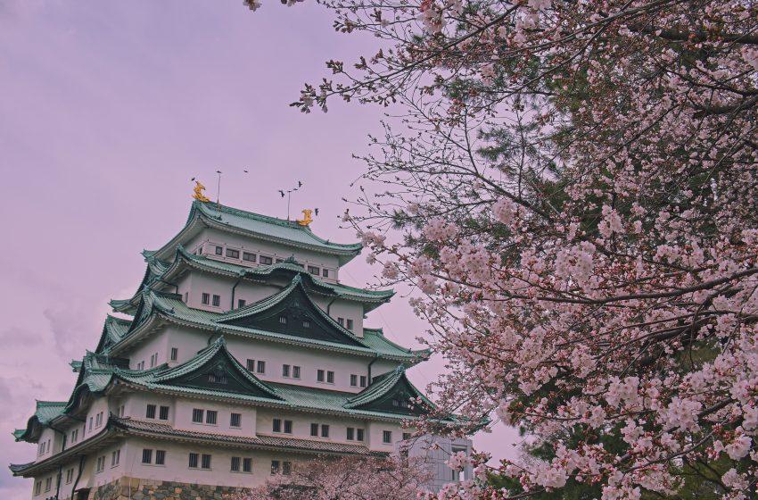 מזג אוויר  ביפן בעיר נגויה