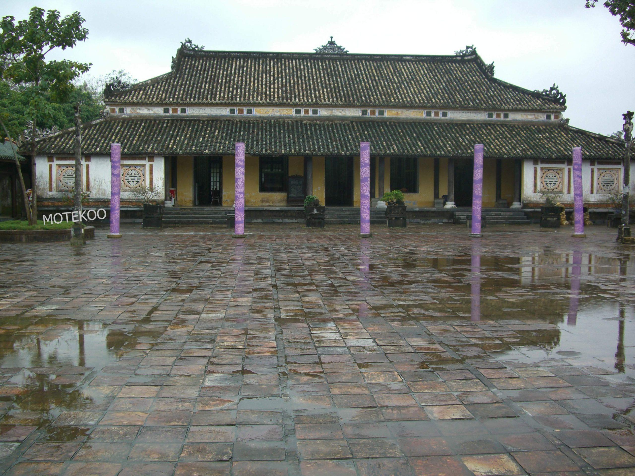 וייטנאם טייס 2011 (10)