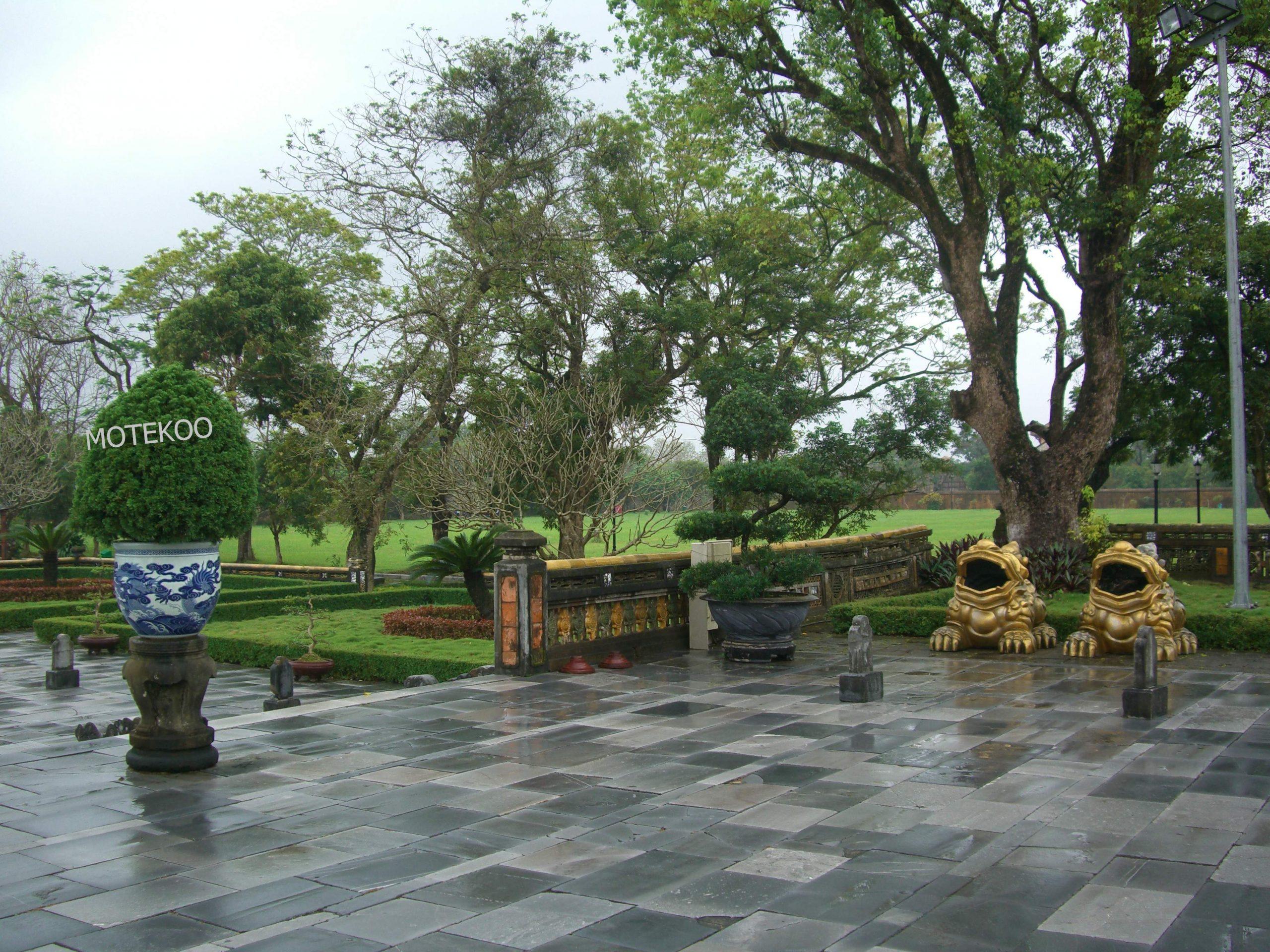 וייטנאם טייס 2011 (7)