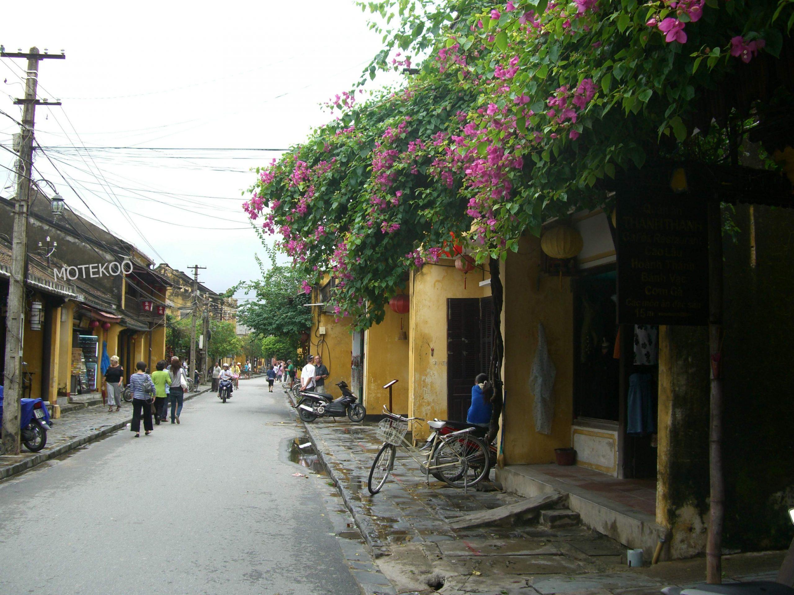וייטנאם טייס 2011 (83)