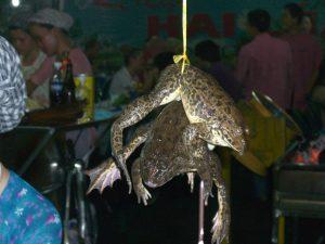 וייטנאם אוכל