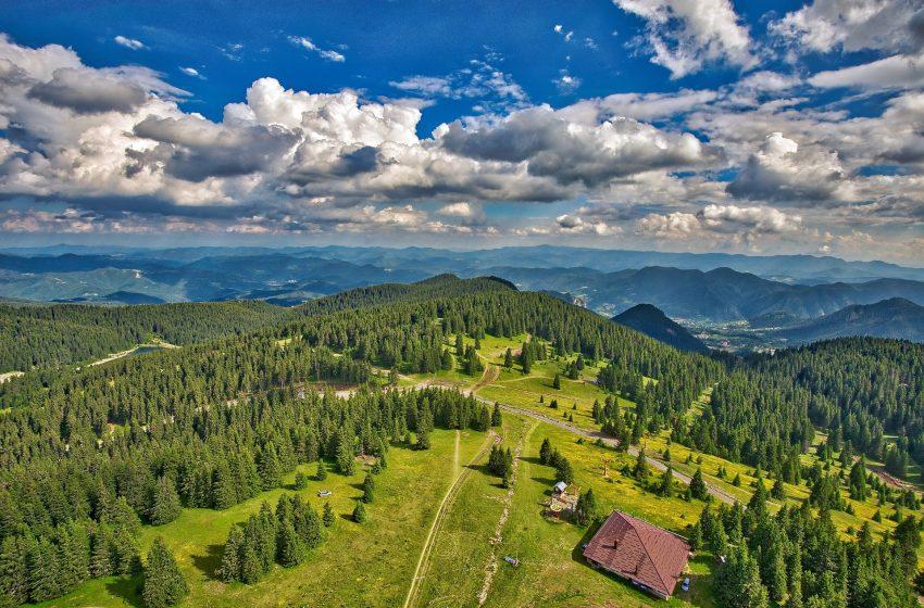 בולגריה יער פמפורובו עמק סמוליאן